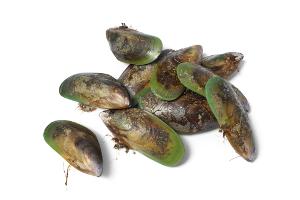 Vloeibare groenlipmossel goed alternatief bij lage rugklachten