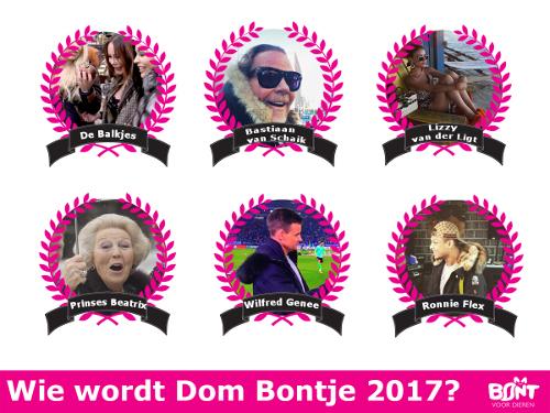 Bobbi Eden ontsnapt aan titel Dom Bontje 2017