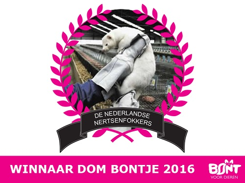 [Nederlandse nertsenfokkers uitgeroepen tot Dom Bontje 2016]