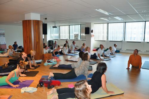 Instituut EISRA introduceert AYURYOGA op Internationale Yoga Dag