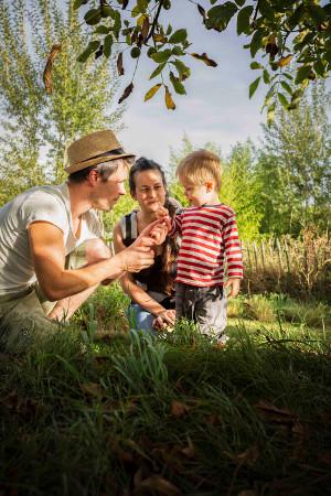Ruim 70 pesticidevrije tuinen in Nederland open voor publiek