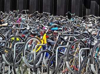Search image nederland fietsen