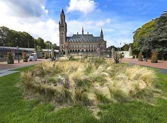 Search image nederland den haag