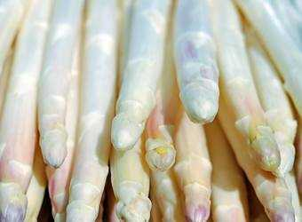 Search image asperges