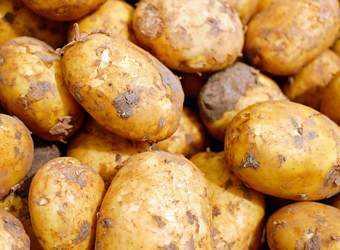 Search image aardappelen